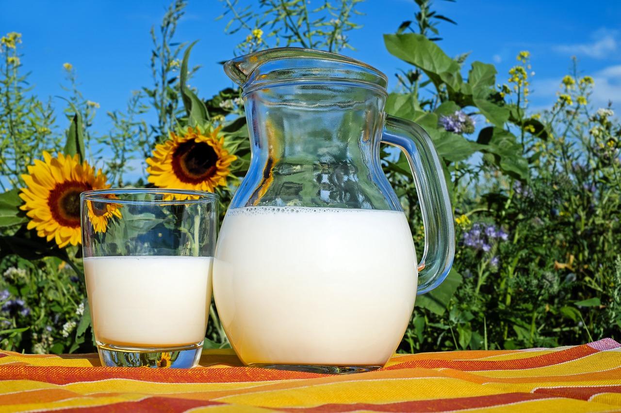 プロテイン 牛乳