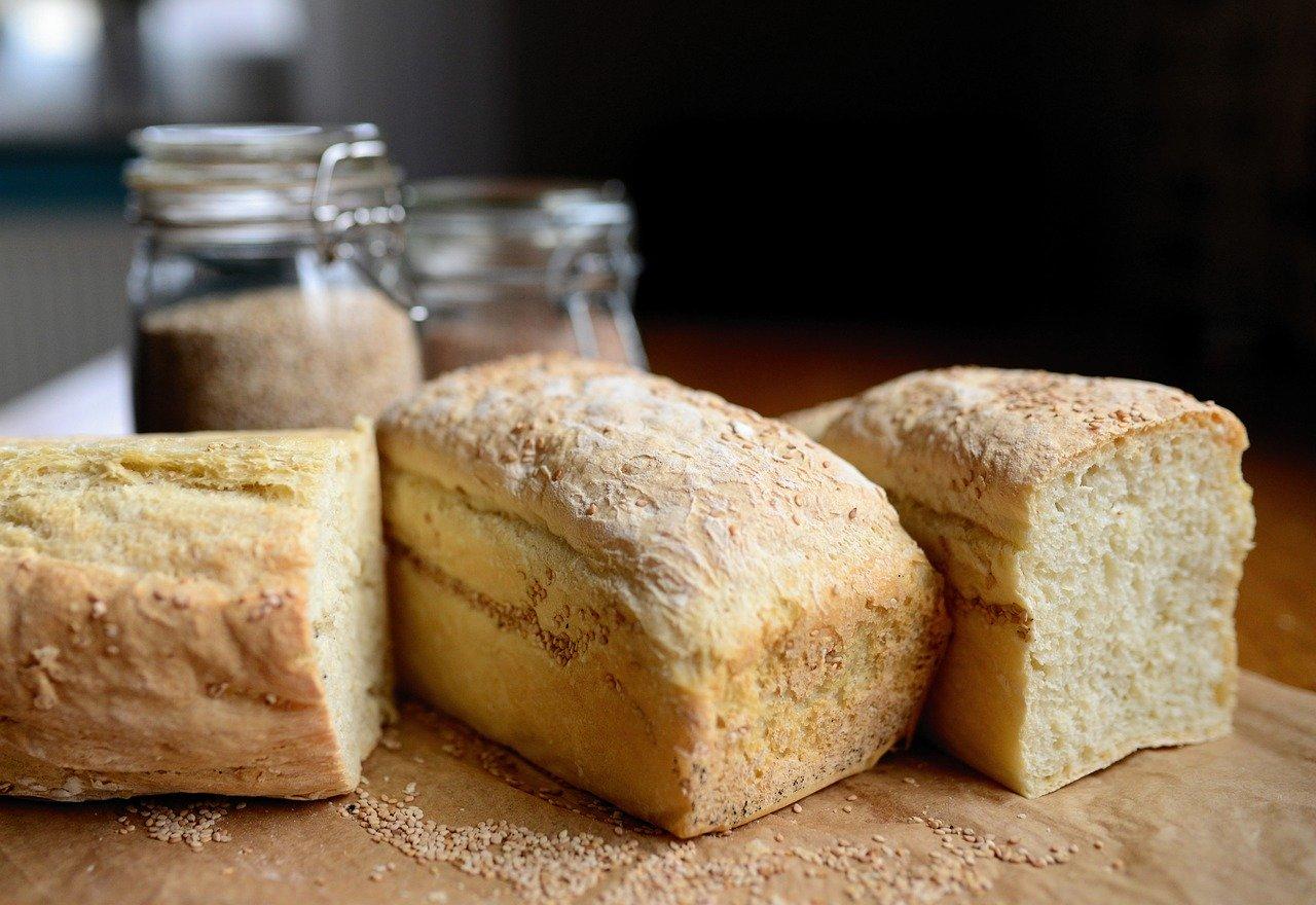 発酵 酵母菌 パン