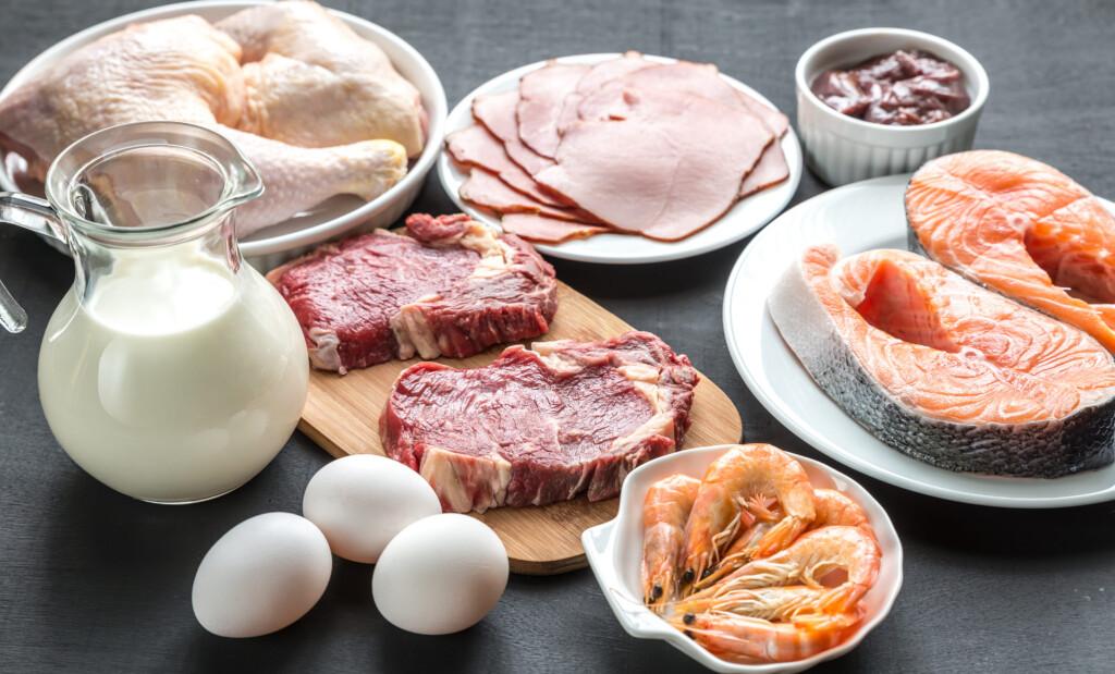 タンパク質が豊富な食材 免疫力